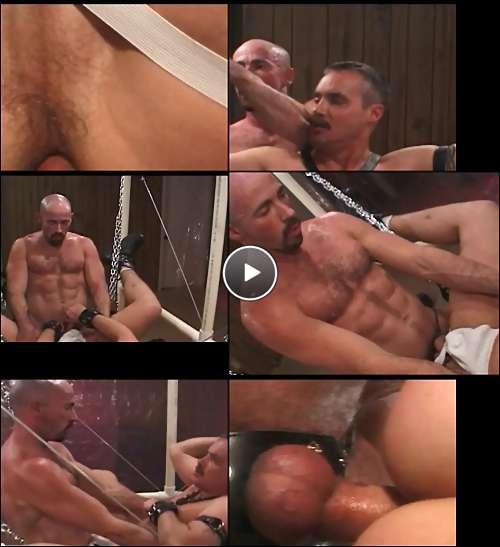 celebrity male porn stars video